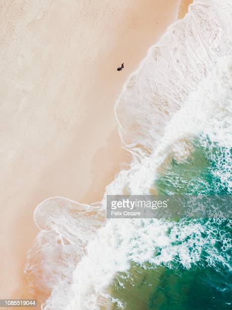 an aerial beach shot of guy walking on the beach and the waves breaking on the shore - fiji stock pictures, royalty-free photos & images