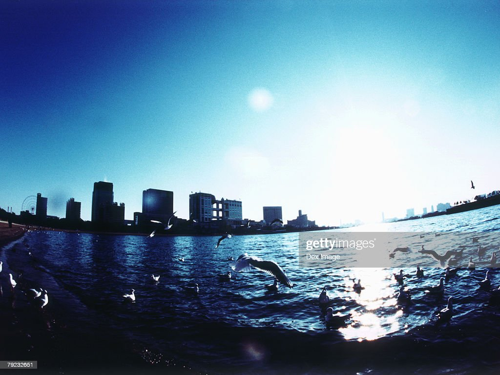 An aerial fisheye lens view of Tokyo Bay, Japan : Stock Photo