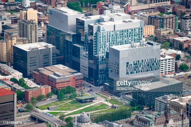 60 Top Montreal Birds Eye Pictures, Photos and Images