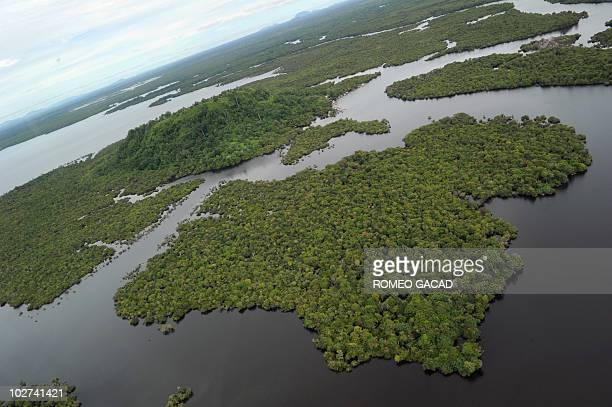 An aerial photograph taken on July 6 2010 shows part of a wetland forest at the Danau Sentarum National Park in West Kalimantan on Indonesian Borneo...