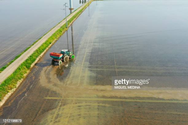 An aerial picture taken on May 8, 2020 shows a tractor sowing rice in a water submerged plantation near Robbio, Lombardy, during the country's...
