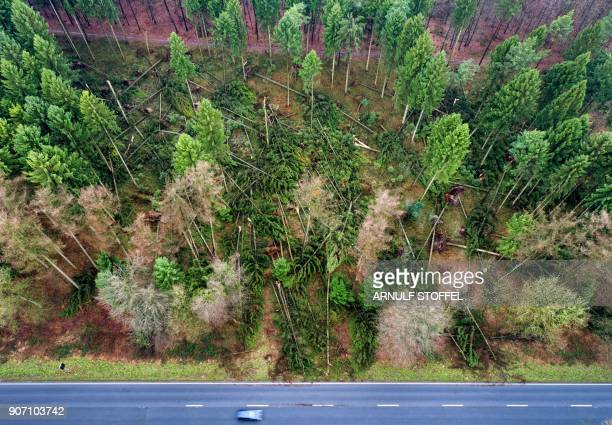 TOPSHOT An aerial picture taken with a drone on January 19 2018 shows a car driving on a road past fallen trees near the German town of Kleve western...