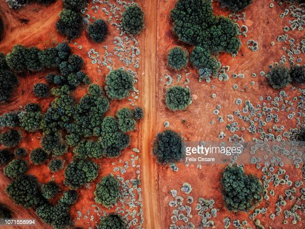 an aerial shot of the red centre roads in the australian outback - australia foto e immagini stock