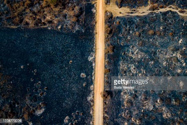 An aerial view of a burnt area of the Pantanal on September 24, 2020 in Pocone, Brazil. Pantanal is located mostly within the Brazilian state of Mato...