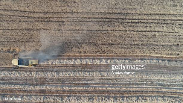 An aerial view of a combine harvester plowing a field in Turkey's southeastern Sanliurfa province on June 26 2019 Irrigation channels reaching more...