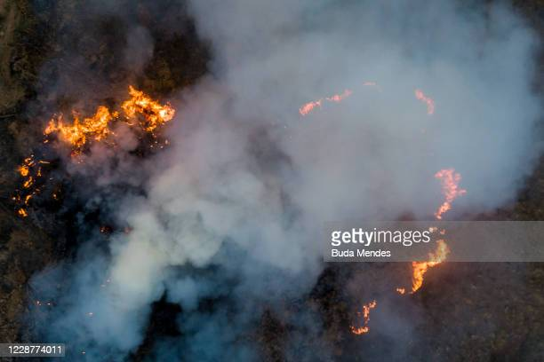 An aerial view of a fire burning next to the Transpantaneira, a road that crosses the Pantanal on September 25, 2020 in Pocone, Brazil. Pantanal is...