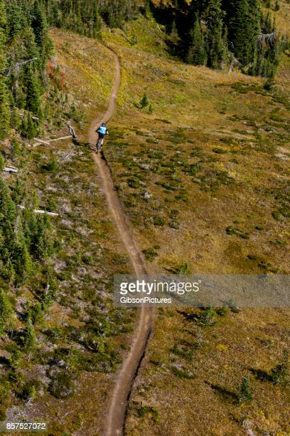 An aerial view of a man riding a mountain bike trail in British Columbia, Canada.