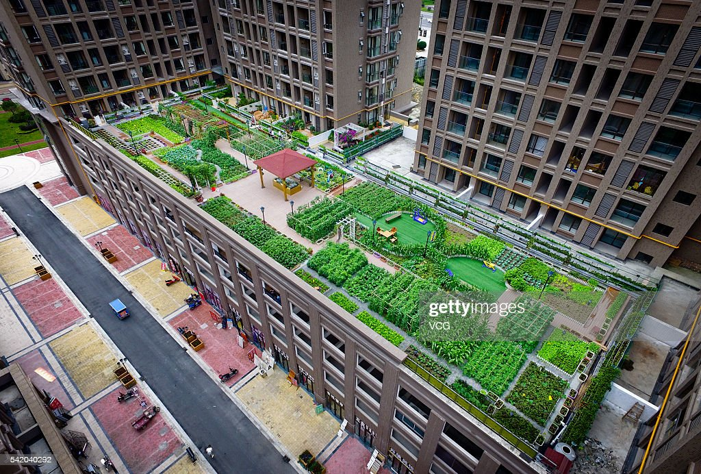 An Aerial View Of A Rooftop Garden On A Fifth Floor Parking Lot On June 8