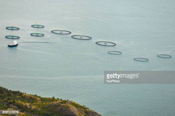 An aerial view of a salmon farm near Rolla and Andorja Island Salmon is Norway's bestknown food product abroad and Norway's biggest export after oil...