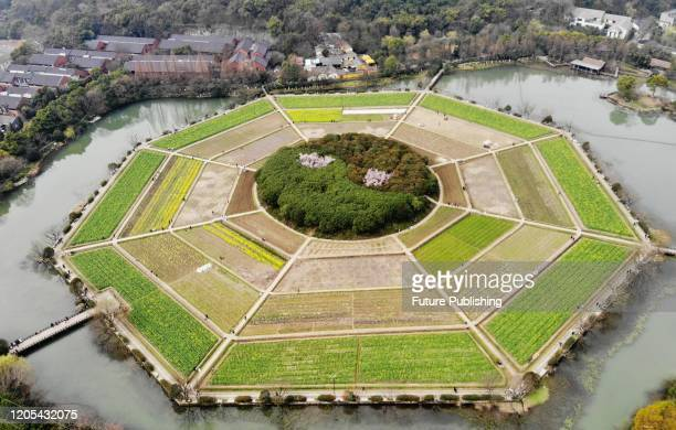 An aerial view of Bagua Field Historic Site Park, a royal farming ground of emperors in the Southern Song Dynasty , in Hangzhou in east China's...