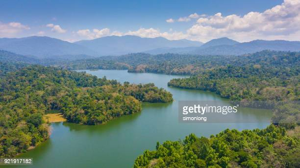 An aerial view of beautiful rain forest.