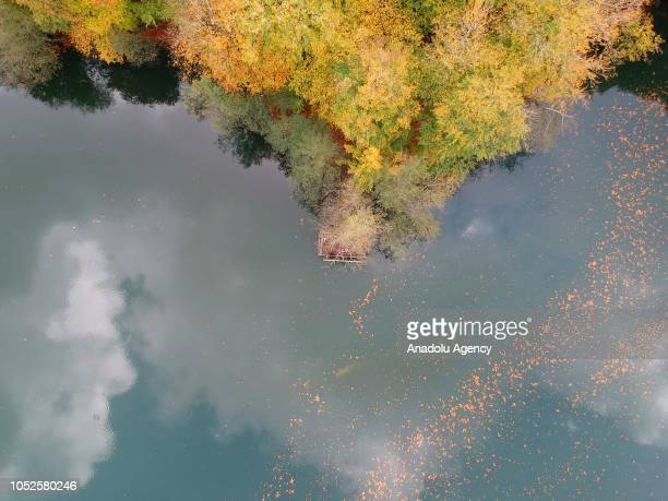 An aerial view of fallen leaves on surface of lake water at Yedigoller National Park during autumn season in Bolu province of Turkey on October 19...