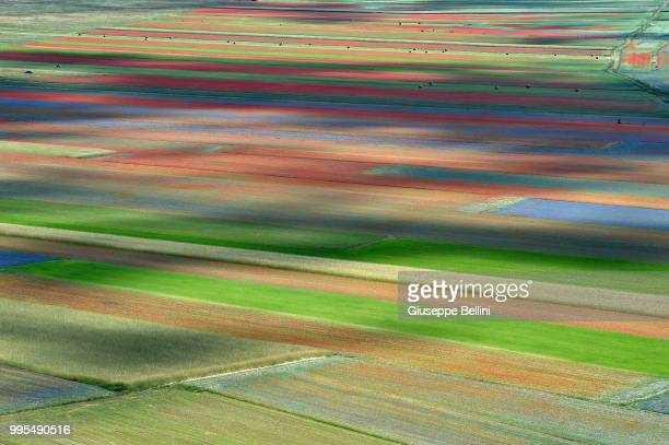 An aerial view of fields of flowers during the annual blossom in Castelluccio on July 10 2018 in Castelluccio di Norcia near Perugia Italy