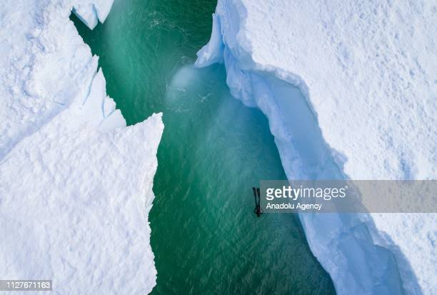 An aerial view of Sahika Ercumen, an internationally renowned Turkish diver, swimming during her free-diving training between the icebergs near...
