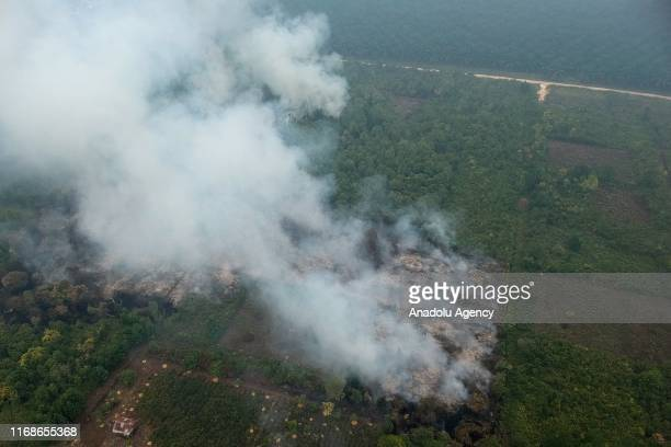 An aerial view of smokes rising after a fire broke out at a peatland in Rimbo Panjang Village Tambang District Kampar Regency Riau Province Indonesia...