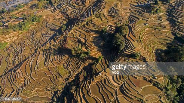 An aerial view of terraced rice fields after harvest at Qingkou Village on November 23, 2019 in Yuanyang County, Yunnan Province of China.
