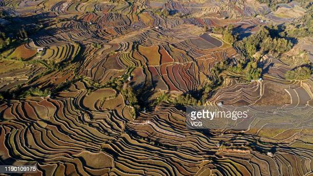 An aerial view of terraced rice fields after harvest at Qingkou Village on November 23 2019 in Yuanyang County Yunnan Province of China