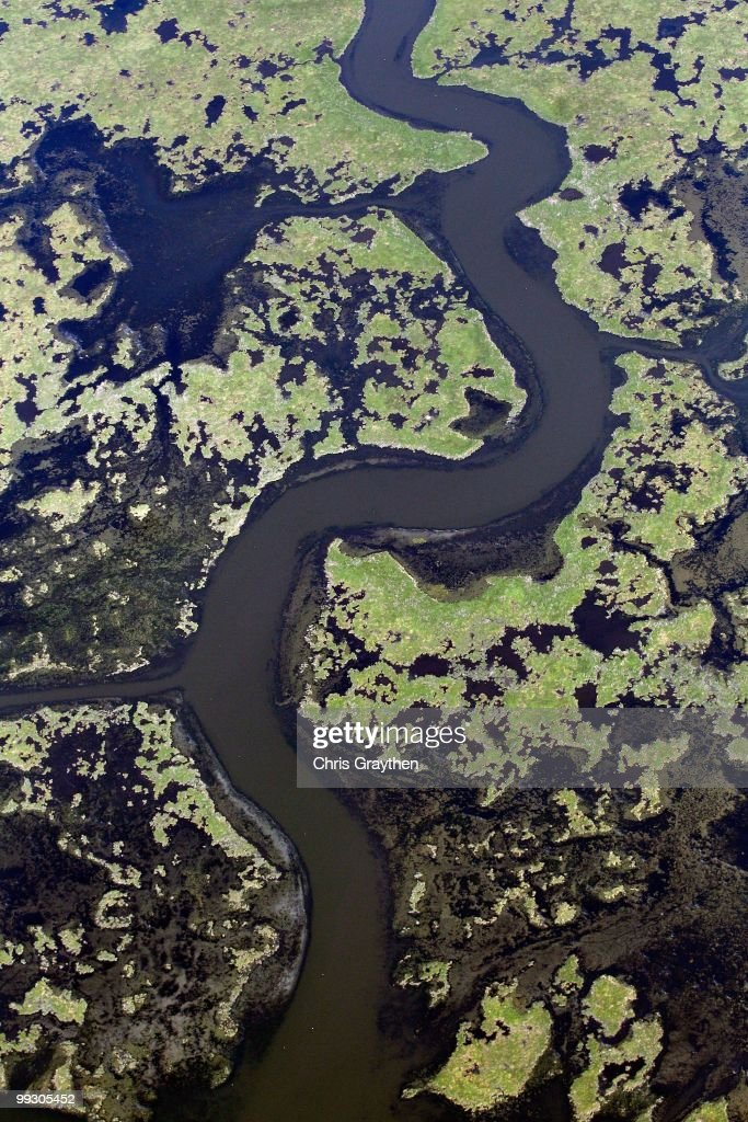 An aerial view of the grassy wetlands off the coast of Louisiana on May 6, 2010.