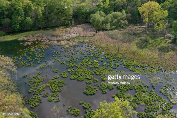 An aerial view of the Stony Point Battlefield historical landmark and state park is seen quite during Covid-19 pandemic in New York, United States on...