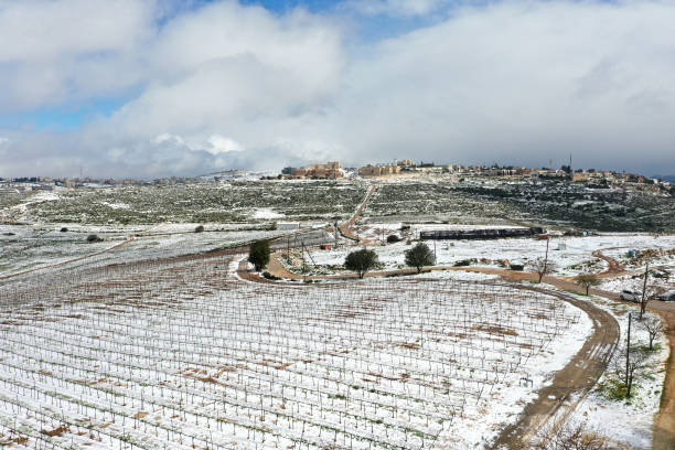 WSB: Winter Snow Covers West Bank Vineyards