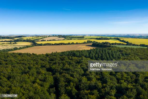 An aerial view over the West Woods on July 30, 2020 in Marlborough, England. Archaeologists have discovered that the sarsen stones used for the...