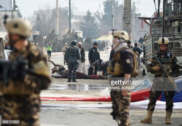An Afghan butcher slaughters an injured horse as security personnel stand guard at the site of car bomb attack targeting foreign forces in Kabul on...