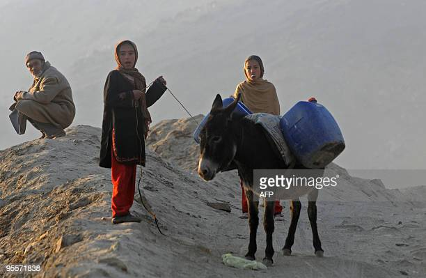 An Afghan girl guides a donkey carrying water containers on TV mountain in central Kabul on December 31, 2009. The Taliban said December 31 it was...
