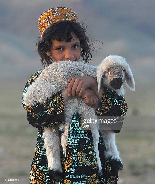 An Afghan girl holds her sheep on the outskirts of Herat on April 10 2012 Poverty and an ongoing insurgency by the ousted Taliban still pose a threat...