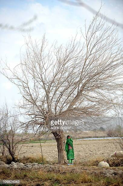 An Afghan girl stands next to a farm as US Marines of the 2nd Batallion 1st Marines Fox Company are on a joint patrol with Afghanistan National ARMY...