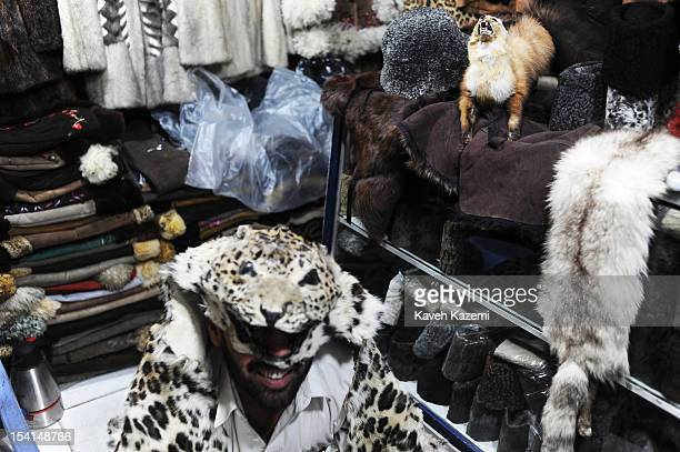An Afghan man puts on an animal skin over his head in a shop specialized in leather fur and animal skin in Chicken Street on October 17 2011 in Kabul...