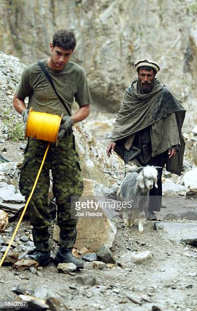 An Afghan villager walks past a member of the 12 Field Squadron 1 Combat Engineer Regiment while he lays out detonation cord as they search for a...