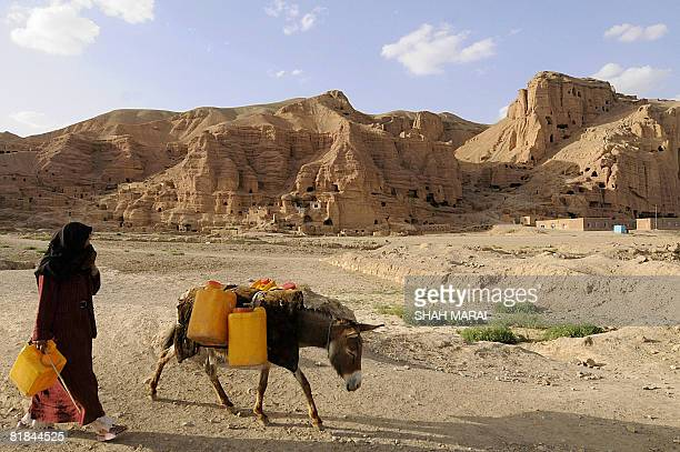 An Afghan woman leads her donkey loaded with drinking water in the old city of Bamiyan on July 7 2008 International teams of scientists are working...