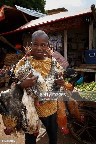 An African boy carries slaughtered chickens over the market in Niamey on August 10 2016 in Niamey Niger