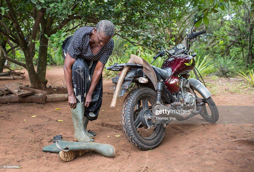 Female farmer in Ghana : News Photo