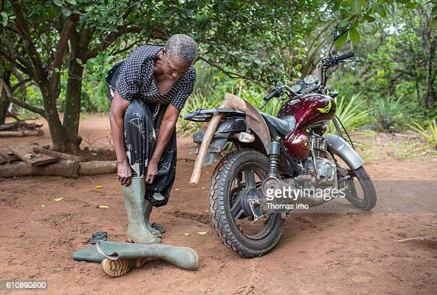 An African farmer puts on her rubber boots to work on a cashew farm on September 06 2016 in Congo Ghana