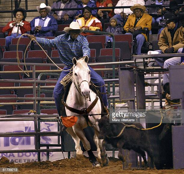 An AfricanAmerican teenage cowboy charges out from the shoot in pursuit of a calf during the Junior Roping finals at the National Black Rodeo Finals...