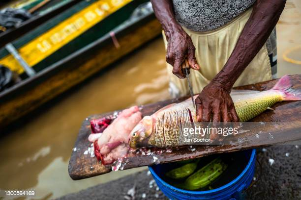 An Afro-Colombian vendor prepares a fish for sale in the Atrato river market on September 28, 2019 in Quibdó, Colombia.