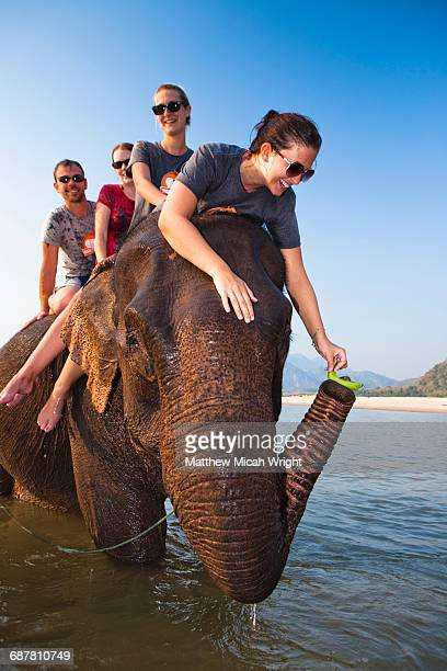 An afternoon riding around on local elephants.