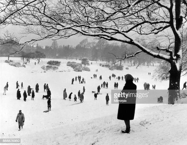 An afternoon walk on the park lake. The overnight fall of snow ruined skating chances on Sefton Park lake but many people had the experience of...