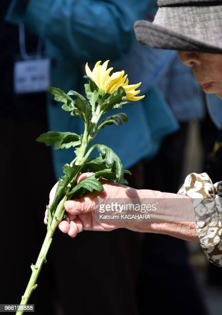 An aged woman offers flowers at Chidorigafuchi War dead grave Land during the 70th anniversary of the end of World War II in Tokyo Aug 15 2015