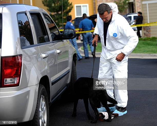 An agent with a bomb sniffing dog checks out cars park near the apartment where the FBI raided the apartment of Najibullah Zazi at the Vistas...