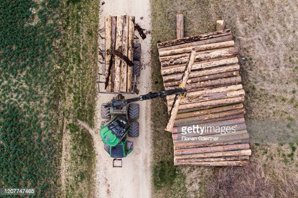 An agriculture machine stacks wood on March 19 2020 in Kodersdorf Germany