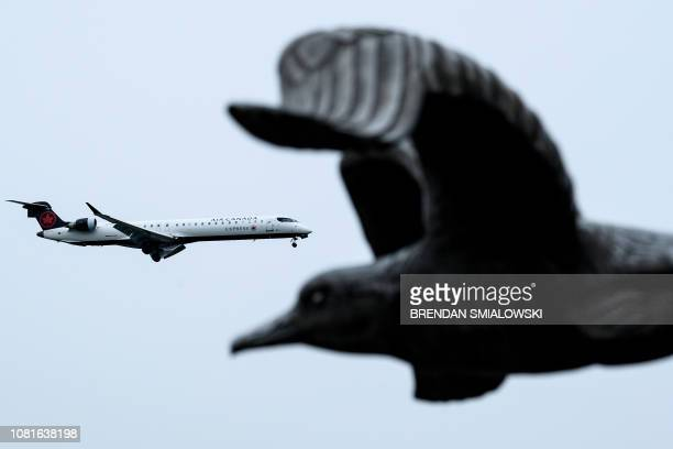 An Air Canada plane passes the Navy Merchant Marine Memorial as it lands at Ronald Reagan Washington National Airport during the 22nd day of the US...