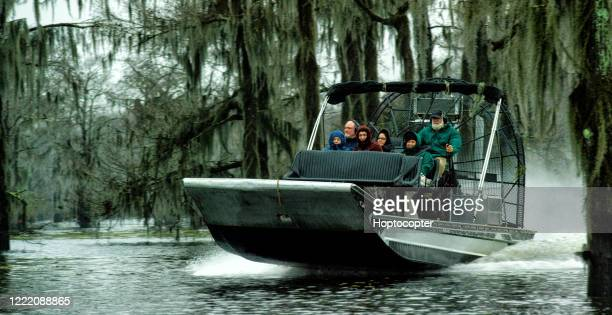 an airboat tour in the atchafalaya river basin swamp in southern louisiana under an overcast sky - lafayette louisiana stock pictures, royalty-free photos & images