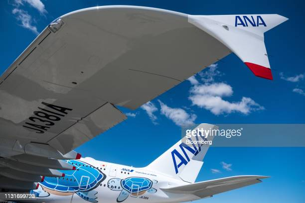 An Airbus SE A380 aircraft with ANA Holdings Inc's unique livery depicting sea turtles native to Hawaii stands outside the Airbus factory in Toulouse...