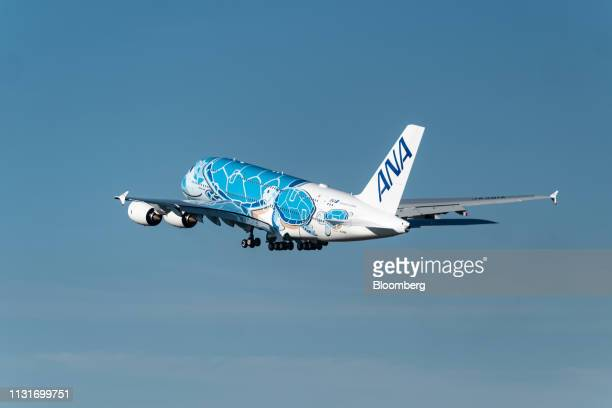 An Airbus SE A380 aircraft with ANA Holdings Inc's unique livery depicting sea turtles native to Hawaii flies from the Airbus factory in Toulouse...