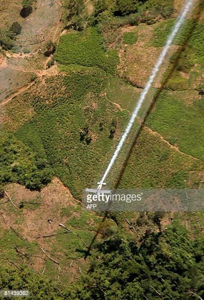 An airplane sprays coca plants in El Catatumbo Norte de Santander department Colombia near the border with Venezuela on June 4 2008 About 3000...