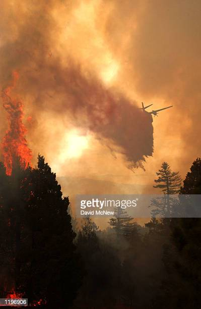 An airtanker drops fire retardant over flaming trees at the top of the Volcan Mountains in the outofcontrol000acre Pine Fire July 31 2002 near Julian...