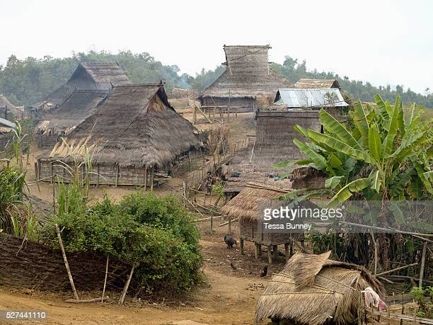 An Akha Nuquie village with traditional grass roofed houses in remote Ban Peryenxangmai village Phongsaly province Lao PDR Lying in a cleared patch...