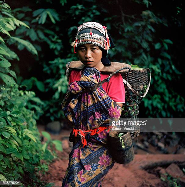 An Akha woman carries some produce in the traditional manner wearing the intricately crafted Akha traditional headress She is photographed on the...